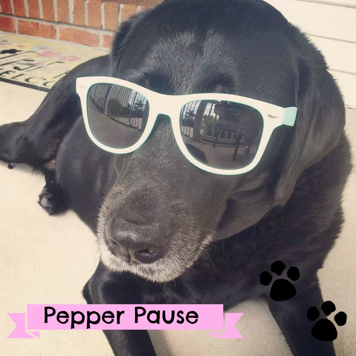 Pepper Pause
