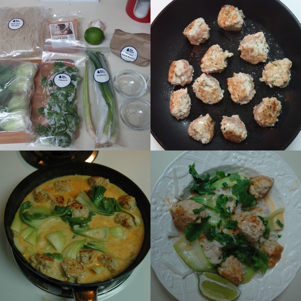 Blue Apron Trial