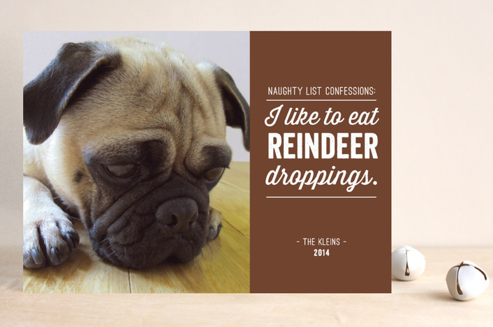 Minted.com woof dog christmas holiday card custome photo