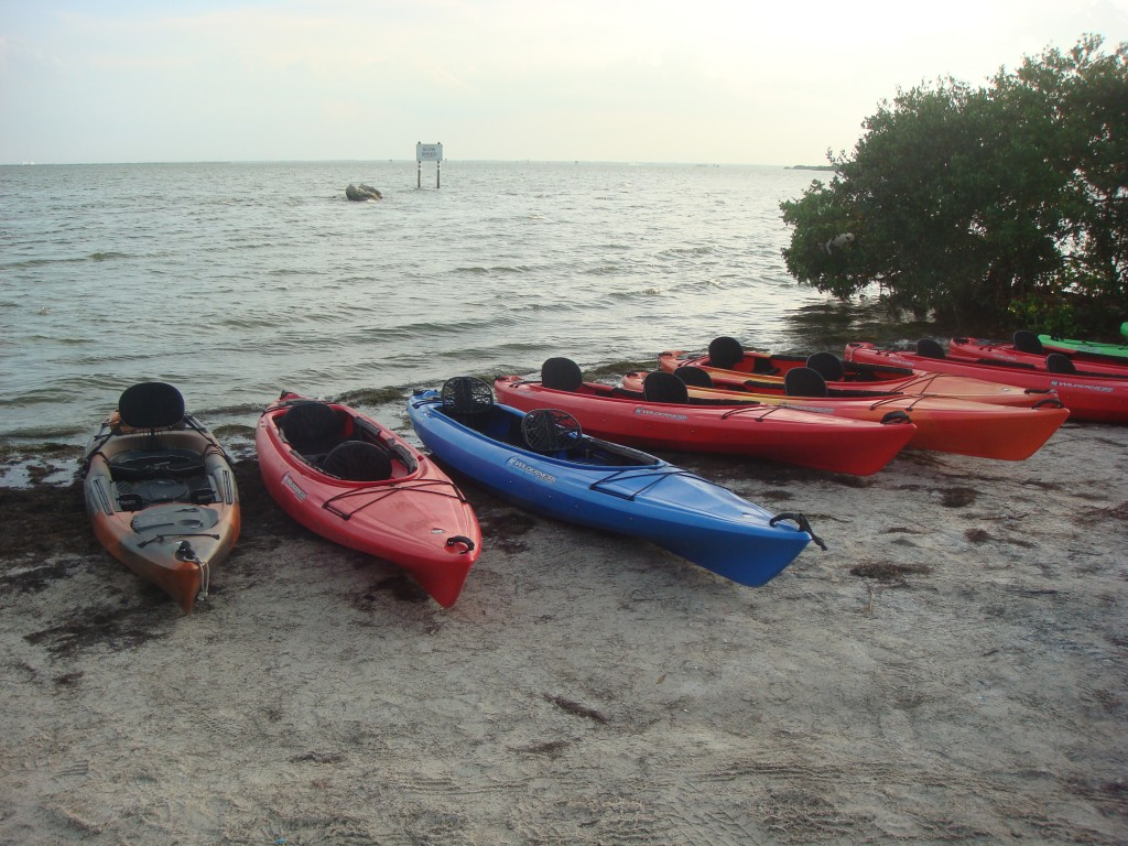 Local Love: A Day Away Kayak Tours
