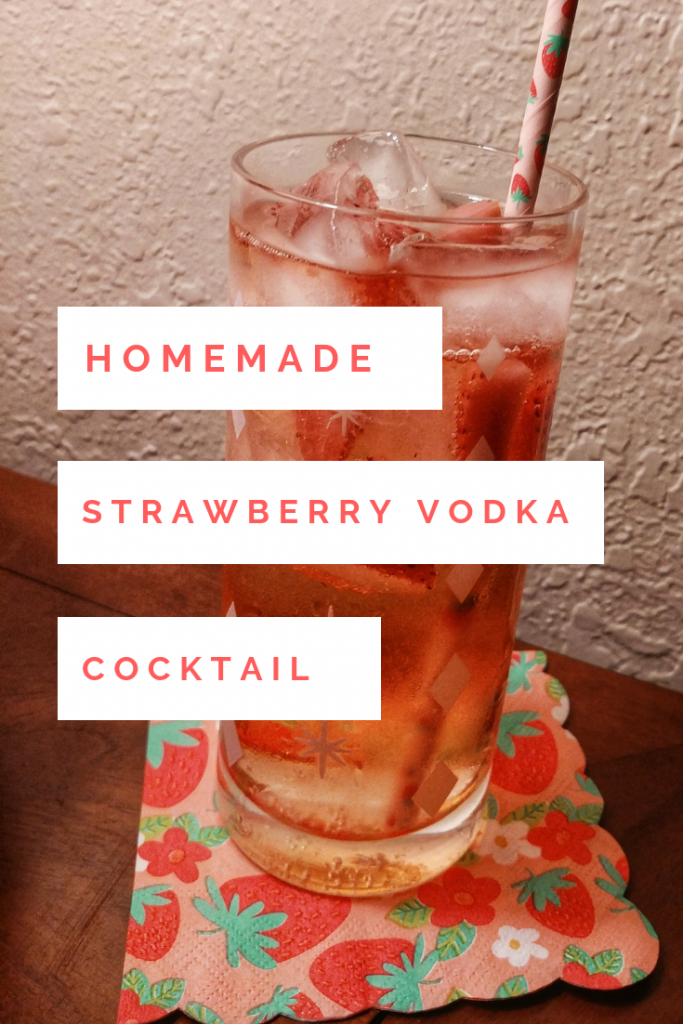 Homemade Strawberry Vodka Spritzer Cocktail Recipe