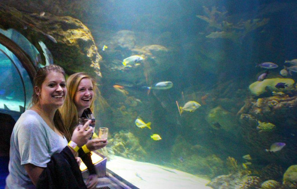 Drink Like a Fish 🐟 with the Fish at SEA LIFE Orlando Aquarium