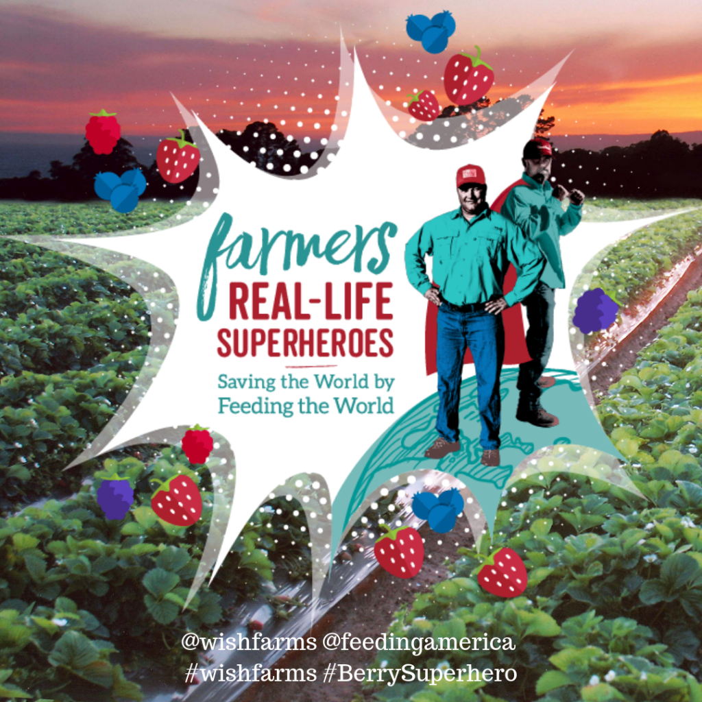 Saving the World by Feeding the World - Wish Farms Summer Campaign