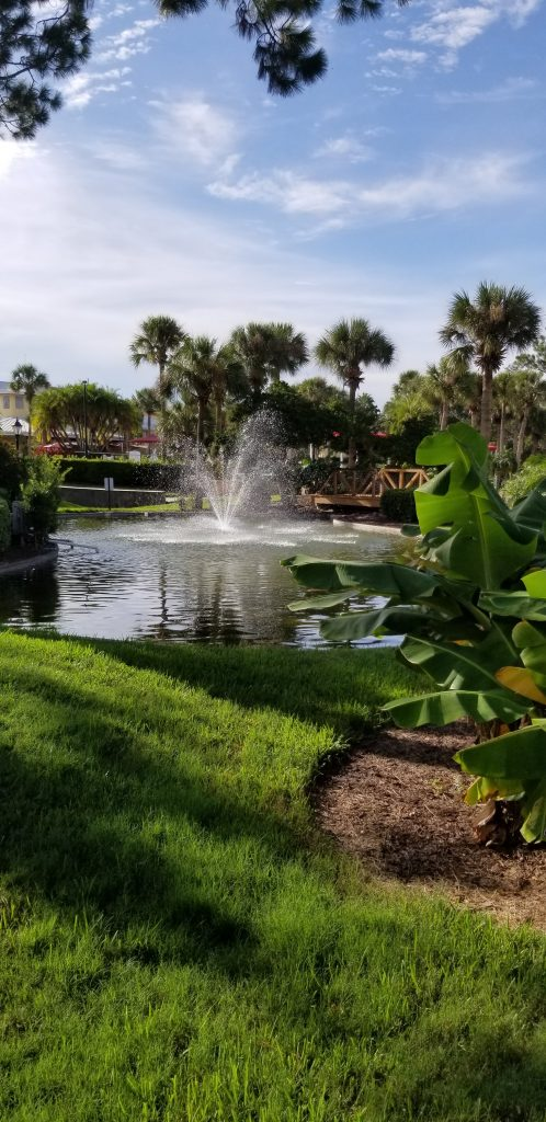Wyndham Orlando Resort International Drive Remote Work Staycation