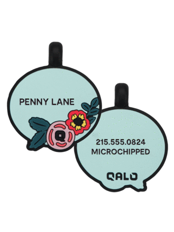Furball Friday: QALO Silicone Dog ID Tags Review