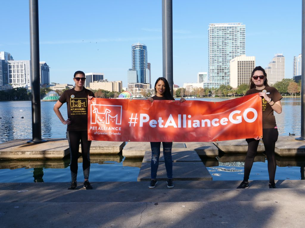 Pet Alliance of Greater Orlando's 2021 Paws in the Park